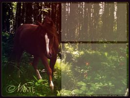 forest horse by renderedsublime