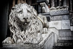 Stone lion by rhipster