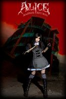 Alice: Madness Returns Steam by michivvya