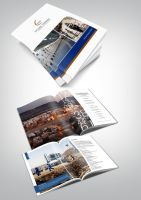 Dome Yemen - Annual Report by alizzy