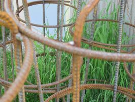 Iron Bars 1a by Windthin