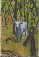 Maremman cow in the wood by DeBeginning