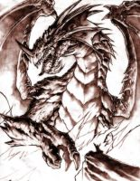 dragon sagrado de fuego by Chaos-Draco