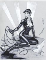 Catwoman pencils by MichaelDooney