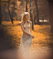 Indian Summer by eugenebuzuk