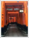 Fushimi Inari Gate - 2 by kucingitem