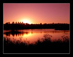 The Golden Pond 2 by AfterDeath
