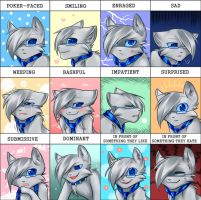 Expression meme! by yumisuu