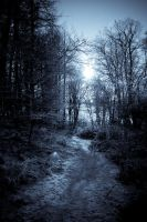The Path by Relayer2112