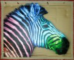 Rainbow zebra by AmineShow