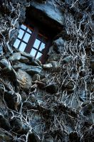 covered in vines by xthumbtakx