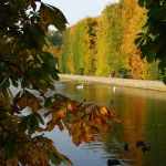 autumn in the park by Wilithin