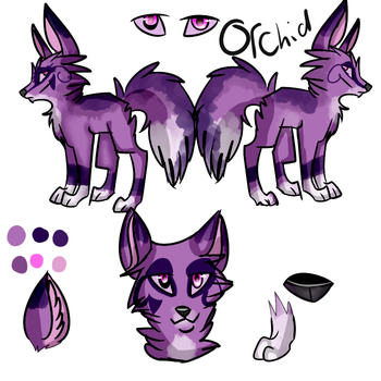 Reff Sheet For Orchid by Sandfire000