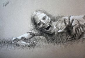 Walking Dead Zombie by Quinton-Watson