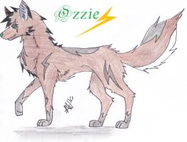 :.:Ozzie Entry:.: by Koi-Winters