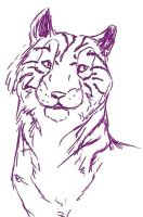Tiger Sketch 2 by Joava