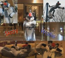Best of Skroy by RayaWolf