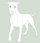 unclipped Pitbull by J-Dove