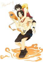 Ace and Luffy The memory by youkokurama1