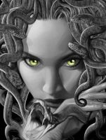 Medusa by adipotter