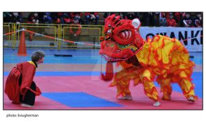 dragon dance by liviugherman
