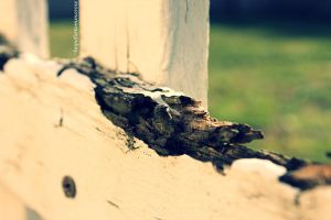 Imperfections... by hopefortommorow