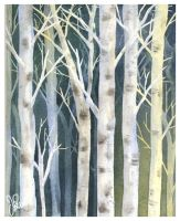 Birches 2 by Jackin