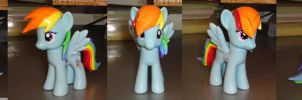 Rainbow Dash Finished Kit by OtakuSquirrel