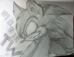Sonic TW - Angry or Pain? by SonicTHW93