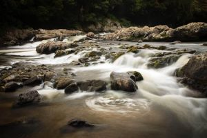 Falling and Flowing by dynax700si