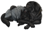 The Alpha Pair by Sidonie