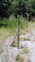 Fence Post by quickwing23