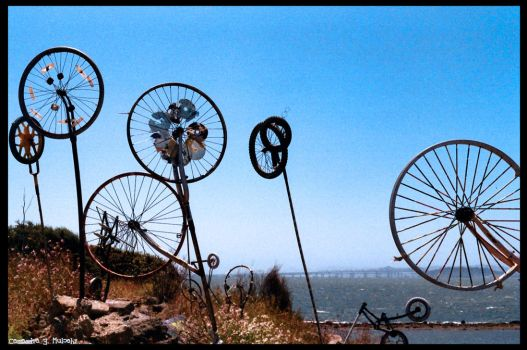 Bikes on a hill by cmulcahy