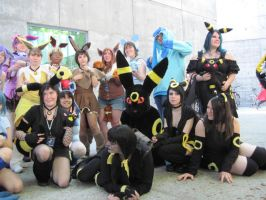 Eevee Evos Group Photo 1on is by TheSapphireDragon1