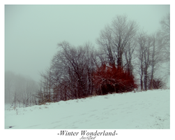 Winter Wonderland #5 by justzed