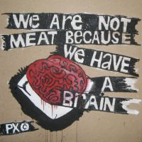 brain by the-Px-corporation