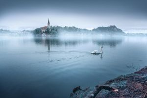 ...bled XI... by roblfc1892
