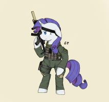Warfighter Rarity by Miniyippo