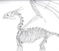 Dragon Skeletal Structure by mctori