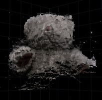 First 3D scan by BiOzZ