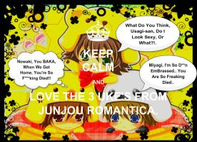 Love The 3 Uke's From JunJou Romantica by KakashiXIrukaLover14