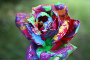Rainbow Rose by angela808