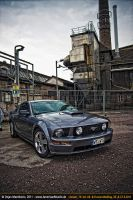 grey mustang by AmericanMuscle