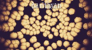 bacteria by Eithx