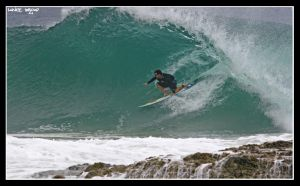 Surfing Snapper3 by lanceb