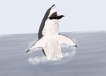 A Great White Breach by Itsgoose2u