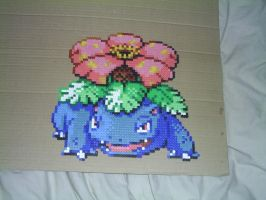 Hama Venasaur by tony-boi