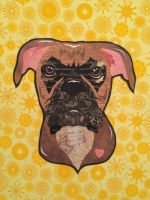 Boxer by cocolocodesigns