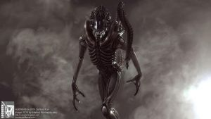 ALIENS warrior by locusta