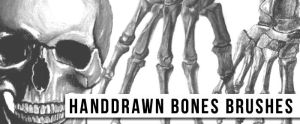 Handdrawn Bones Brushes by sdwhaven